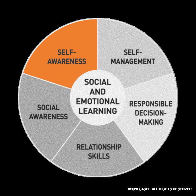 Casel Self Awareness Wheel