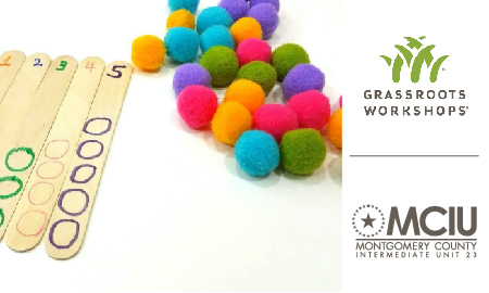 GRASSROOTS Counting on Number Sense- ACT 48 Reporting ONLY