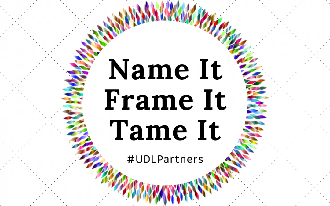Name It, Frame It, Tame It: Brought to You By UDL Partners