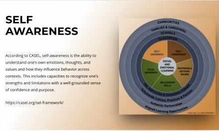 Self-Awareness (CASEL Framework)